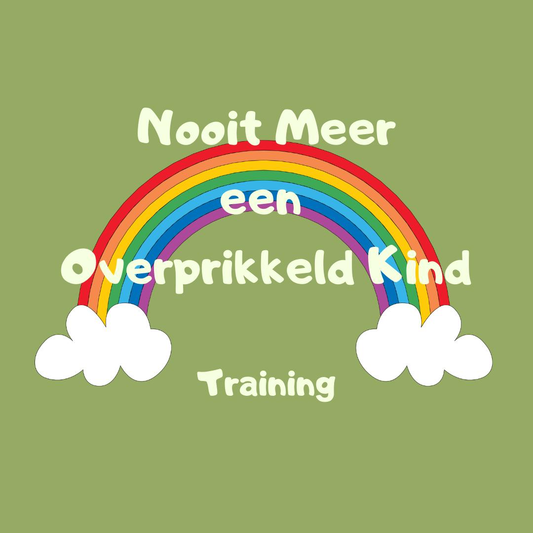 De `Nooit meer een overprikkeld kind´ training voor Ouder en Kind